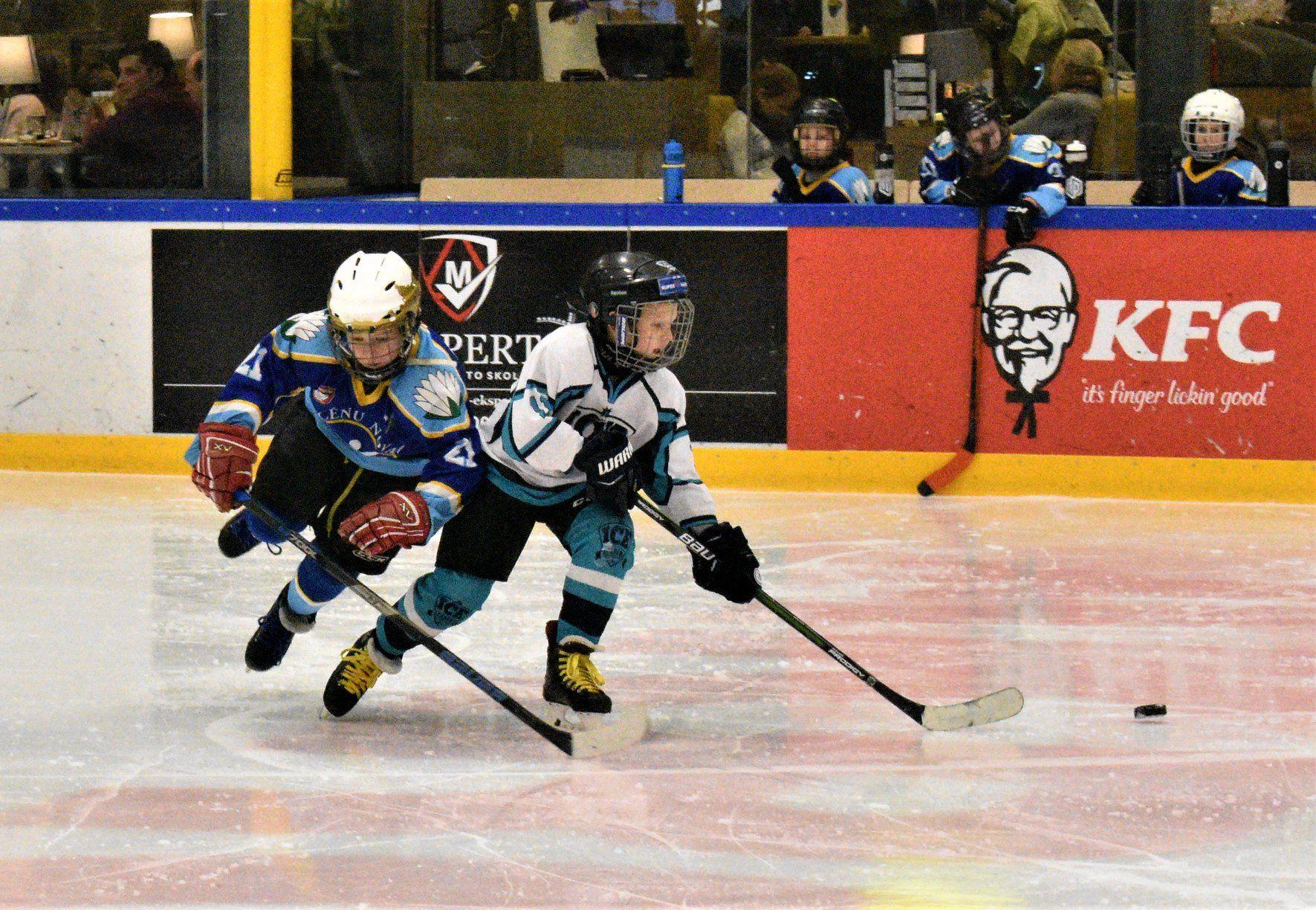Ziemas hokeja miniturnīrs
